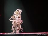 Lady Gaga_w_05